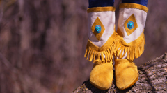 Moccasin Stories